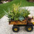 Un camion de succulentes