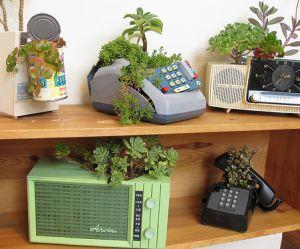 Comment recycler mes vieux objets en jardinières stylées