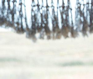 Game of Thrones saison 6 : Emilia Clarke se confie sur le flirt entre Daenerys et Yara (spoilers)