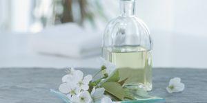 20 astuces naturelles pour soulager une piqûre de moustique