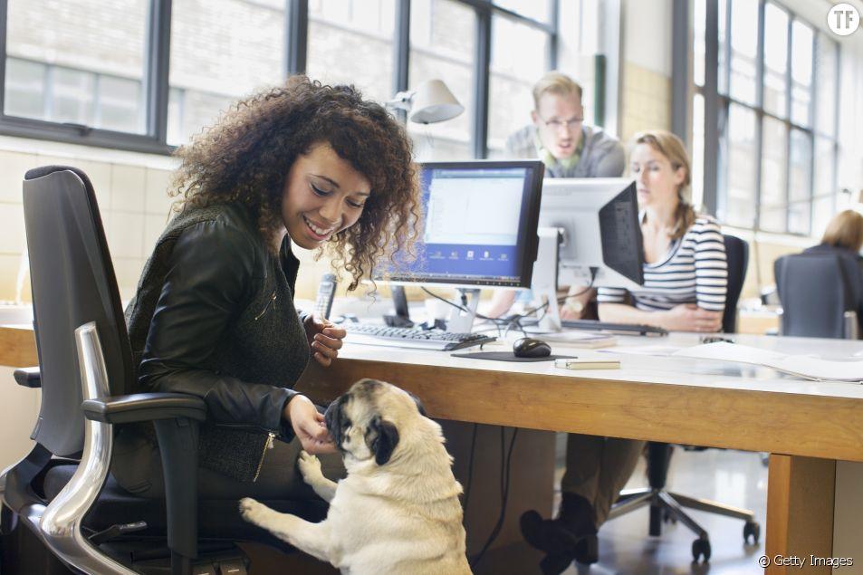 Amener son chien au bureau serait bel et bien la clef du bonheur professionnel.