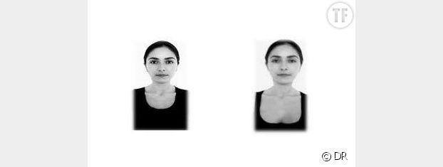 Les photos utilisées par le chercheur pour l'expérience