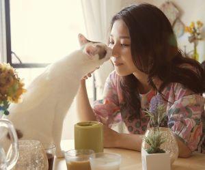 7 signes qui prouvent que votre chat vous aime