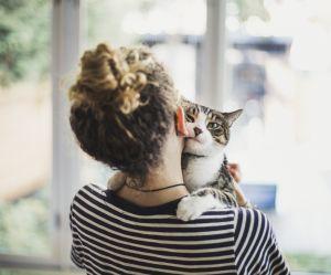 Comment je fais garder mon animal pendant les vacances ?