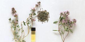 L'ingrédient naturel (et quasi miracle) qui efface les cernes