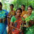 Piplantri, le village indien qui célèbre les femmes