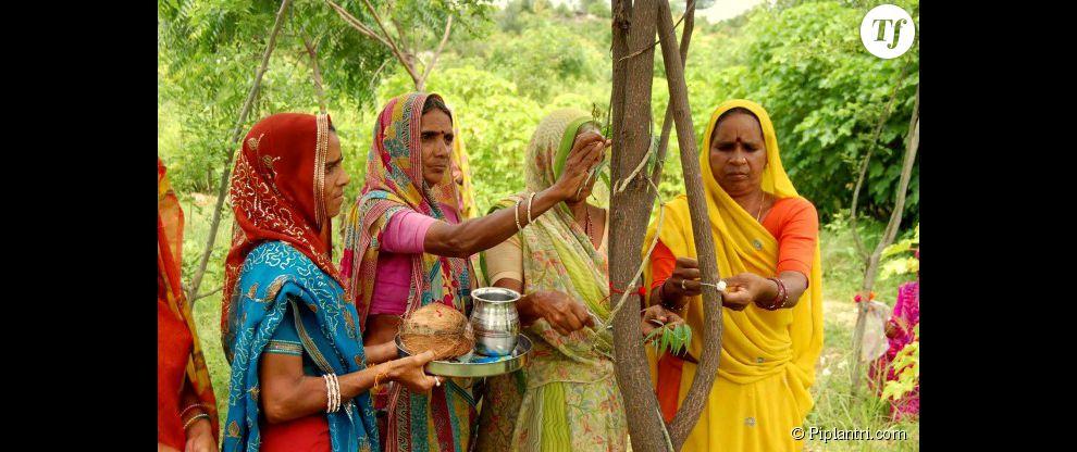 Les habitants du village sont chargés de prendre soin de leur forêt