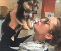 Nina Dobrev : elle a trouvé un nouveau chéri... à poils (photo)