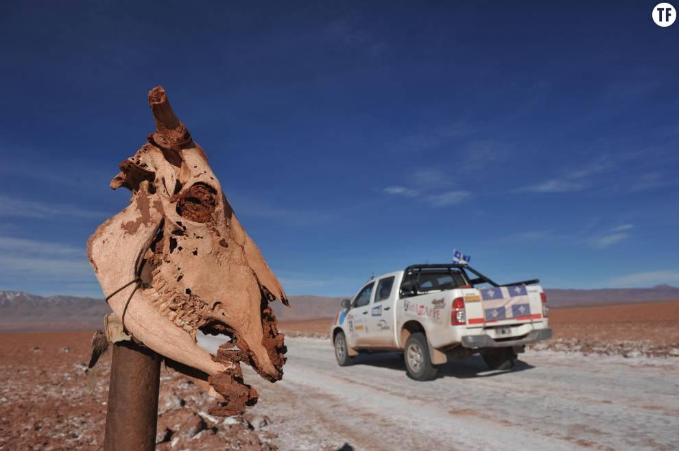 Trophée Roses des Andes 2015 : les paysages argentins