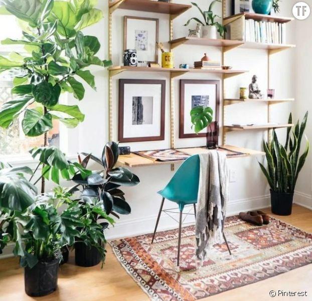 8 idées déco pour faire de votre intérieur une jungle urbaine
