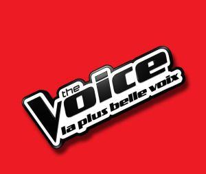 The Voice 2017 : sixièmes auditions à l'aveugle sur TF1 Replay (1er avril)