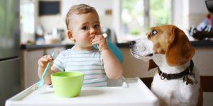 Les femmes ayant un chien auraient des bébés en meilleure santé