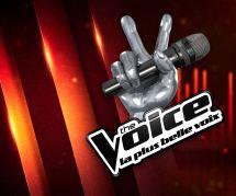 The Voice 2017 : le grand show à revoir sur TF1 Replay (20 mai)