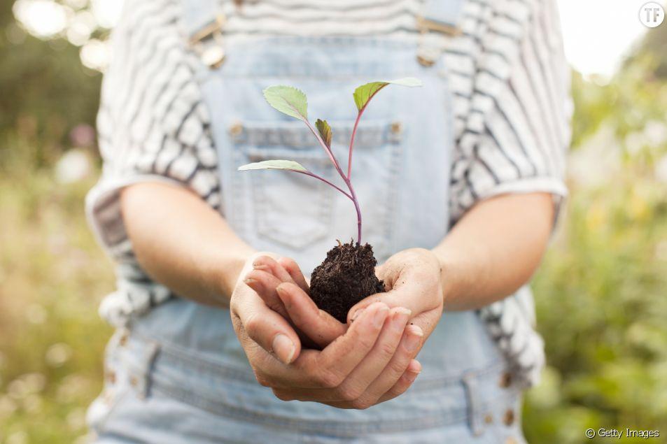 Devenir vegan : quels sont les bienfaits pour la planète ?