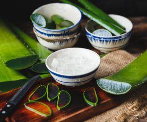 Le jus d'aloe vera, le nouvel allié beauté et santé des filles healthy