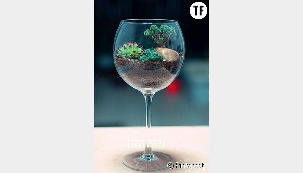 Un terrarium format mini