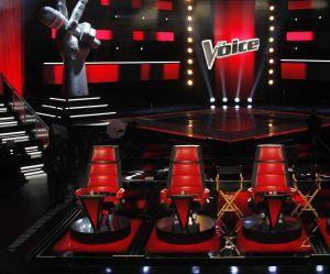 The Voice 2018 : voir le replay des 5èmes auditions à l'aveugle (24 février)