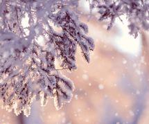 5 rituels magiques du solstice d'hiver pour se mettre l'esprit en fête