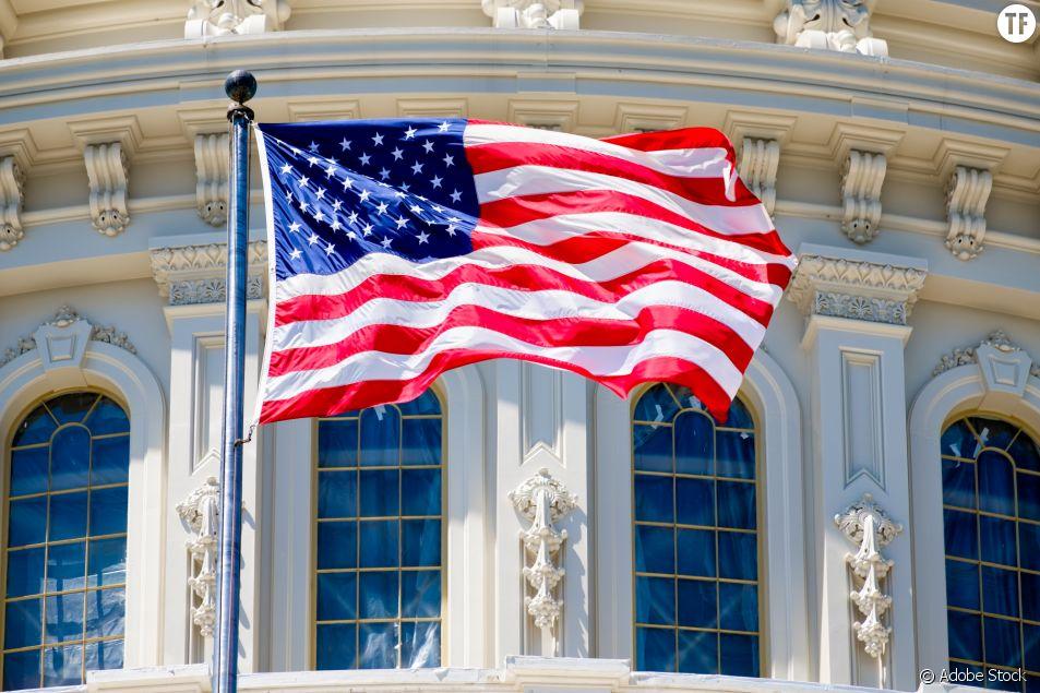 Drapeau devant le Capitol à Washington aux Etats-Unis