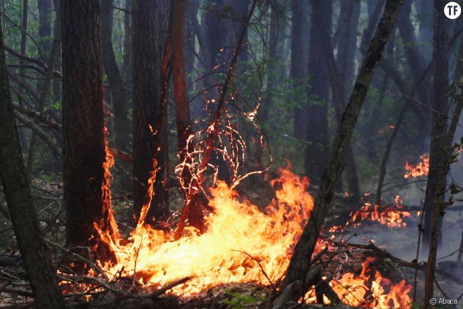 En Yakoutie, les incendies font rage et alarment médias internationaux et associations.